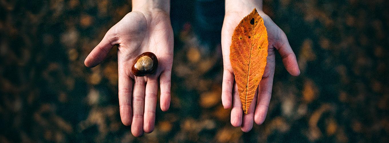 image-dualidade-espiritual-material
