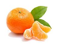 guia-da-alma-aromaterapia-angela-hoppen-tangerina