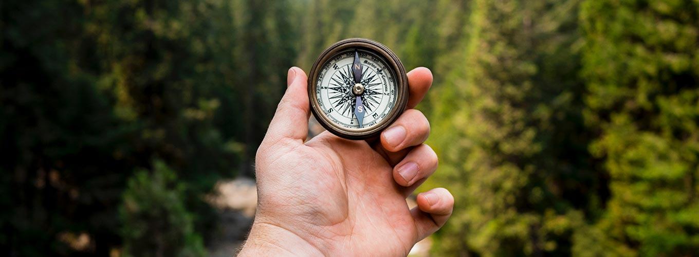image-encontre-novos-caminhos-coaching-ontologico