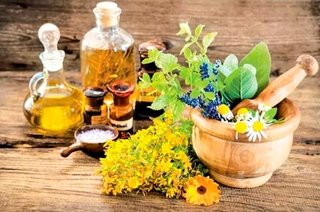 sessao-fitoterapia-online-terapia-natural-plantas
