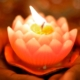 vela em lótus - representação de tapas no yoga - fogo interior