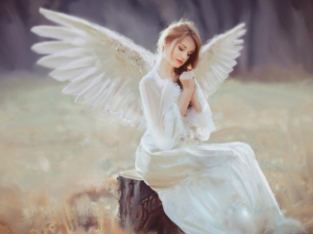 Tarô dos Anjos • Guia da Alma